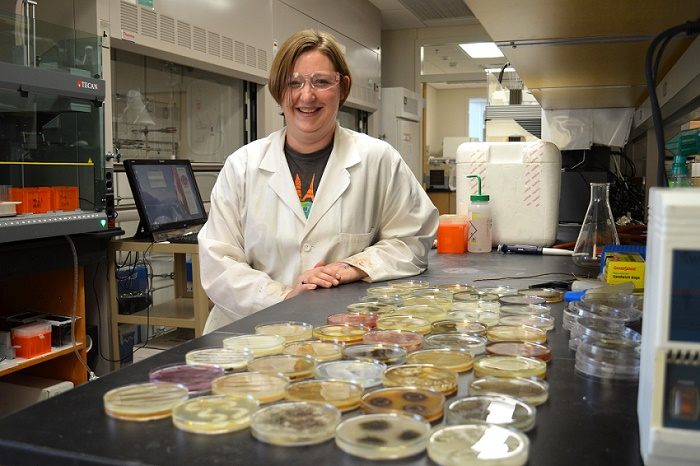 University of Oklahoma research assistant Karen Wendt with petri dishes. Photo provided by OU.