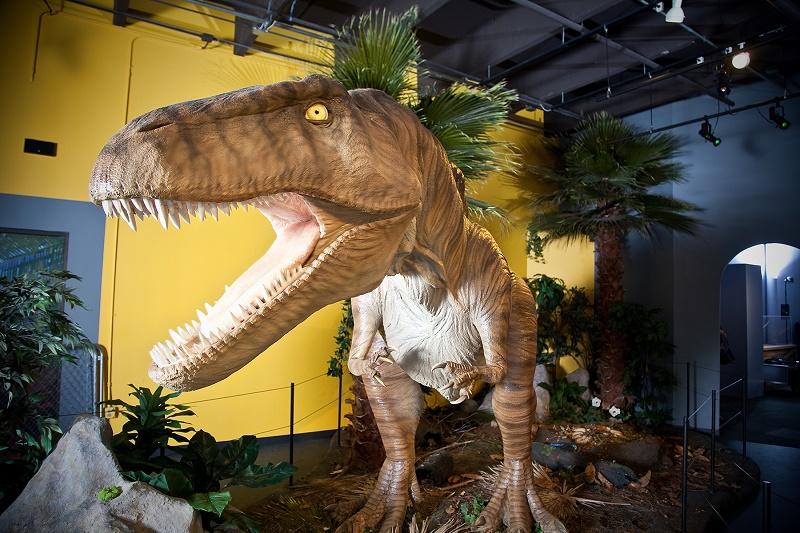 Acrocanthosaurus in Science Museum Oklahoma's Red Dirt Dinos