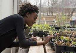 A child inspects plants in a greenhouse at Science Museum Oklahoma